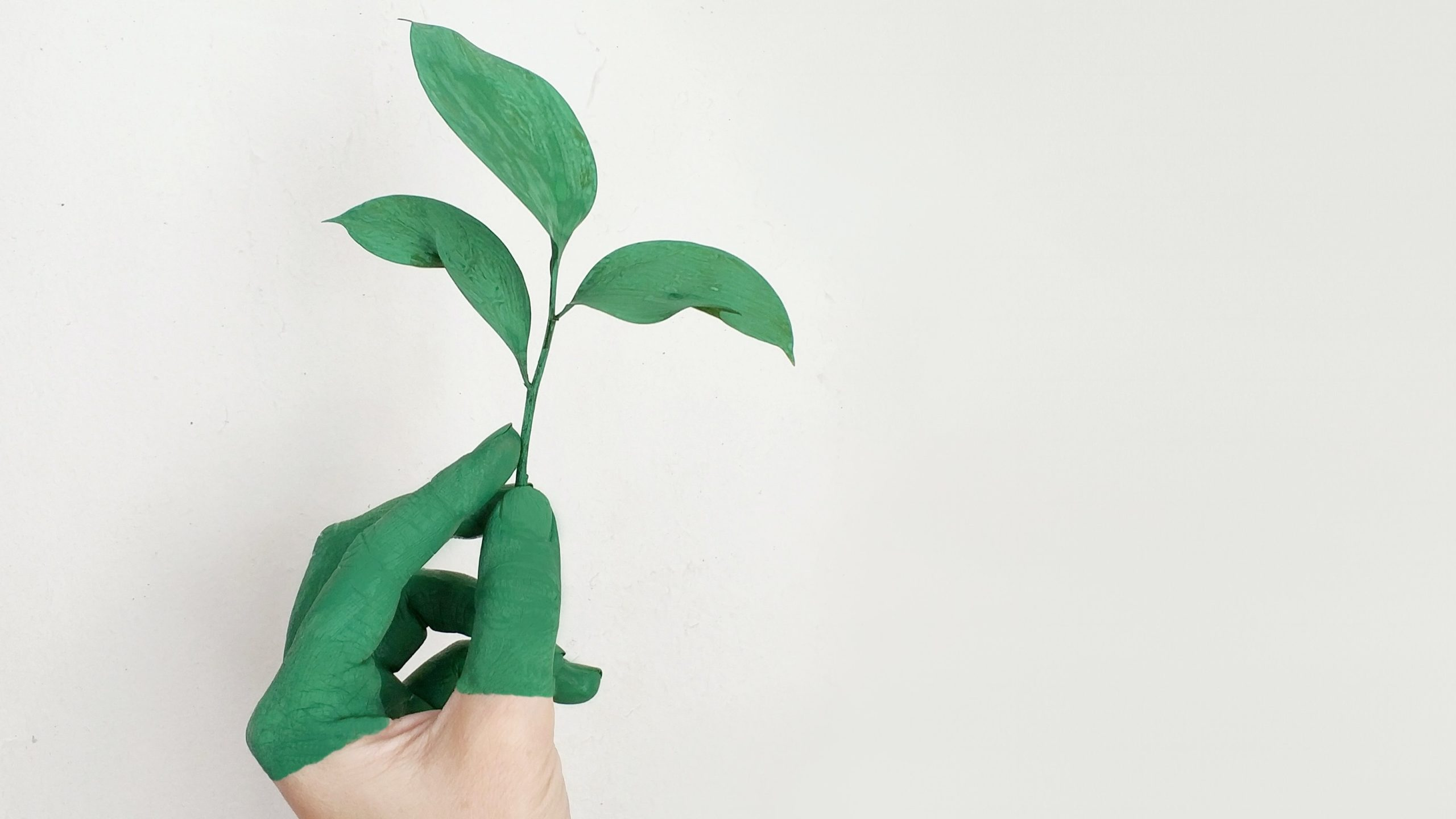 """Social Entrepreneurship: Geschäftsmodell """"Gutes Tun"""""""