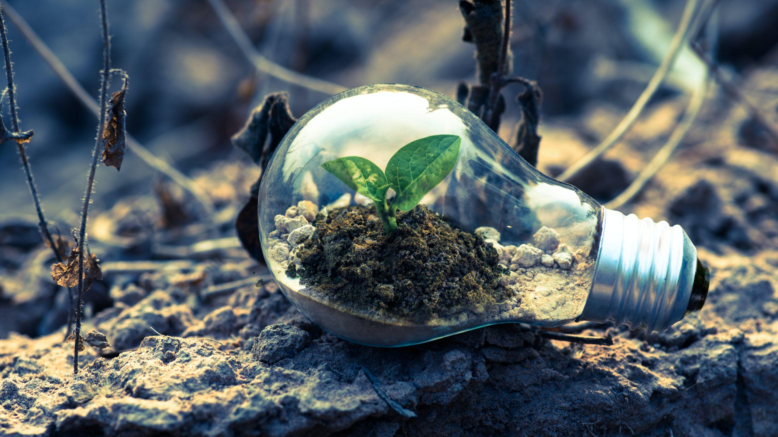 Smog-Apps Und Müllabfuhr 2.0: Nachhaltiger Leben Mit Smart Environment